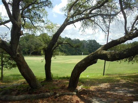Litchfield Country Club - Myrtle Beach Real Estate MLS