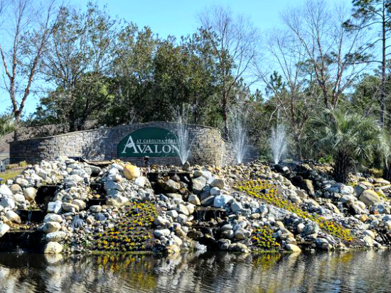 Avalon Homes Carolina Forest Real Estate