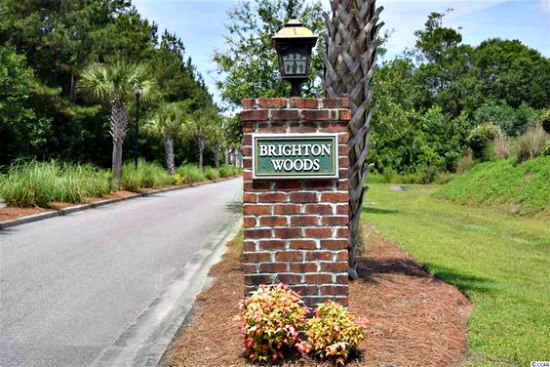 Brighton Woods Carolina Forest Real Estate